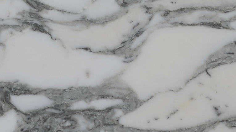 Arabescato Corchia Marble Bathr